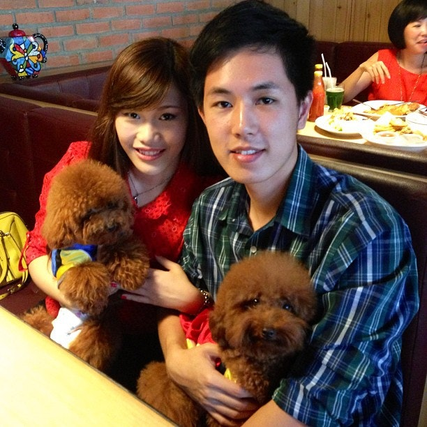 Good Poodle Chubby Adorable Dog - 1330934a5ebb2fbfcac784302_original  HD_20452  .?w\u003d645\u0026dpr\u003d1\u0026fit\u003dcrop\u0026q\u003d80