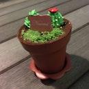 Tiramisu In A Pot