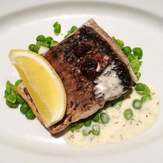 Sustainable Seafood: Seared Barramundi