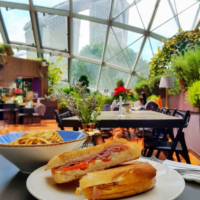 Lunch Inside Flower Dome