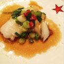 豉汁蒸東星斑 Steamed Star Grouper In Superior Soy Sauce