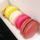 Sister bought #macarons!!