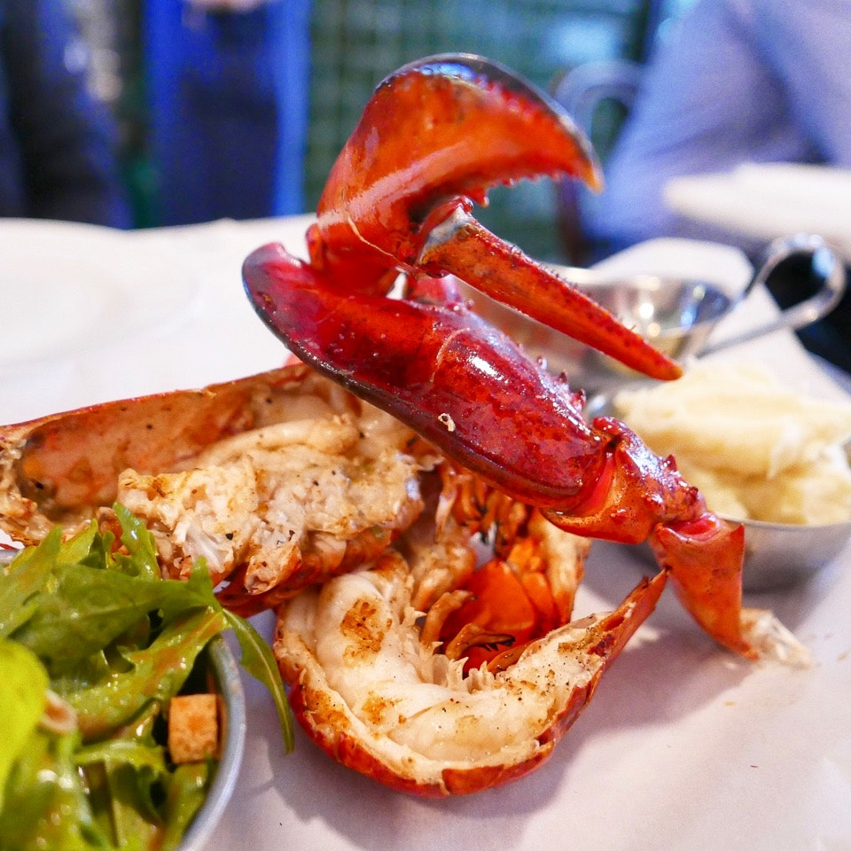 Chargrilled Fresh Lobster ($48++)