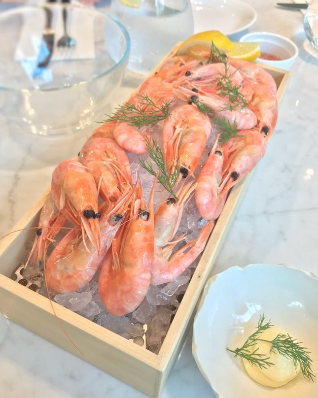 Greenland Cold Water Prawns