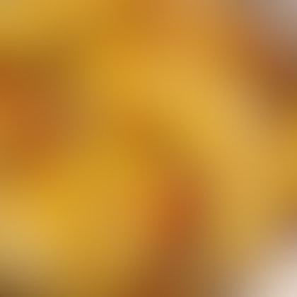 Sambal Cheese Fries