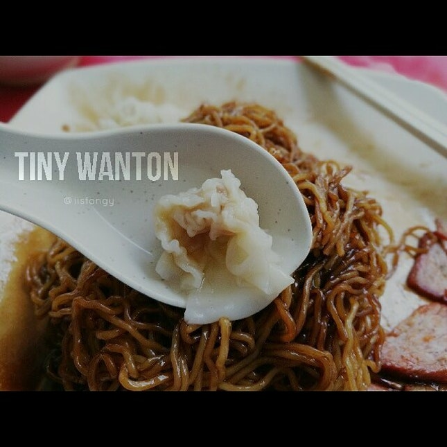 Found a contender for the World's Tiniest Wanton!
