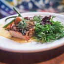 Black Miso Tuna, Japanese Corn Purée, French Bean Niçoise, Pea Shoots, Basil Flower and Ginger-Shoyu Vinaigrette