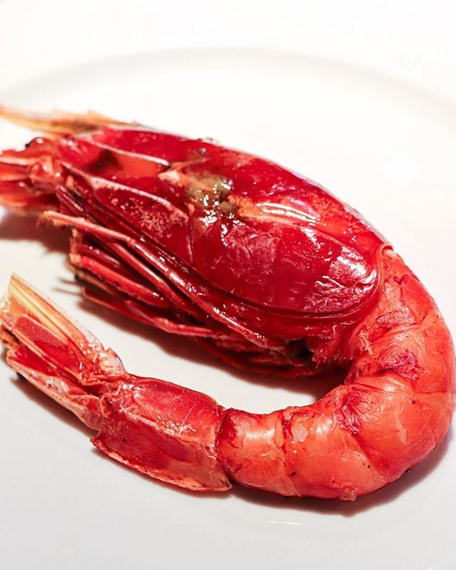 The heavy hitters have finally appeared and let me introduce you to the massively huge Carabinero Prawn from Spain, which is chargrilled on binchō-tan charcoal.