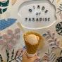 Birds of Paradise Gelato Boutique (East Coast Road)