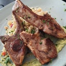 lamb chops 34++
