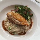 Chickens Steak with risotto $28