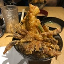 Soft shell crab of dreams
