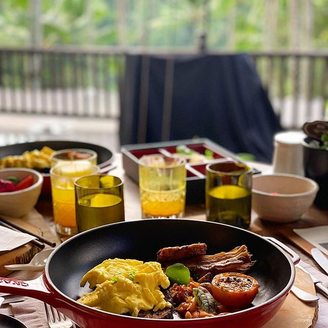 A hearty breakfast, complete with a complimentary forest view.