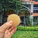 """""""Not only Ang Ku Kueh but sesame ball"""" ・ 📌Ji Xiang Ang Ku Kueh ・ アンクークエと言えばJi Xiang Ang Ku Kueh。  でも実はここの名物がもう一つあるんです。  それがこの胡麻団子ーーー!!! ずっーと気になっていましたが、わたしが普段訪れる朝一の時間帯にはまだお店に並んでおらず、お昼前後から並び始めるという、幻の胡麻団子。  先日上海蟹を食べる前に少し時間があったので、息子を連れて11:45ころ寄ってみたんです。  ある!!ある!!!あるーーーー!!!!! 興奮しすぎて、呆然とする息子そっちのけでぴょんぴょん跳ねちゃいました(笑)  待ち焦がれていた胡麻団子1つ$1。  6個下さい!と言ったらなんとピーナッツとスイートビーンの2種類ありました。  3個ずつ買って、とりあえず1つは上海蟹前だけどパクリ。  ピーナッツ!  ここのピーナッツは息子も大好きで、息子は上海蟹前にアンクークエのピーナッツとヤムの2つを買い食い(笑)  家に帰ってから気付いたけど、形が違うのね。  丸いのがピーナッツで長いのがスイートビーンでした。  中の餡が美味しいのはもちろんのこと、特出すべきは外はカリカリしているのに内側はもっちもち。  どたらももちろん美味しいけど、どちらかと言うとわたしはピーナッツ派。  これは見かけたら絶対買うべし。  ちなみにアンクークエは息子おすすめはピーナッツとヤム、わたしのおすすめはコーンです!  #Angkukueh #jixiangangkukueh @jixiangconfectionery #sesameballs #アンクークエ #ニョニャ菓子 #ニョニャ #nyonya #胡麻団子 #シンガポールグルメ#シンガポール生活#シンガポールライフ#singaporelife#シンガポール #シンガポール在住 #シンガポール旅行 #シンガポールおすすめ #シンガポール情報 #シンガポール暮らし #lovesg #singapura  #singaporeinsta #igsg #sgfood#sgeats#sgfoodies#foodpics#burpple#sgfoodporn#eatoutsg#みど散歩"""