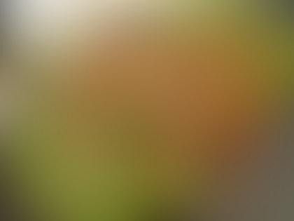 Turmeric Lemongrass Chicken