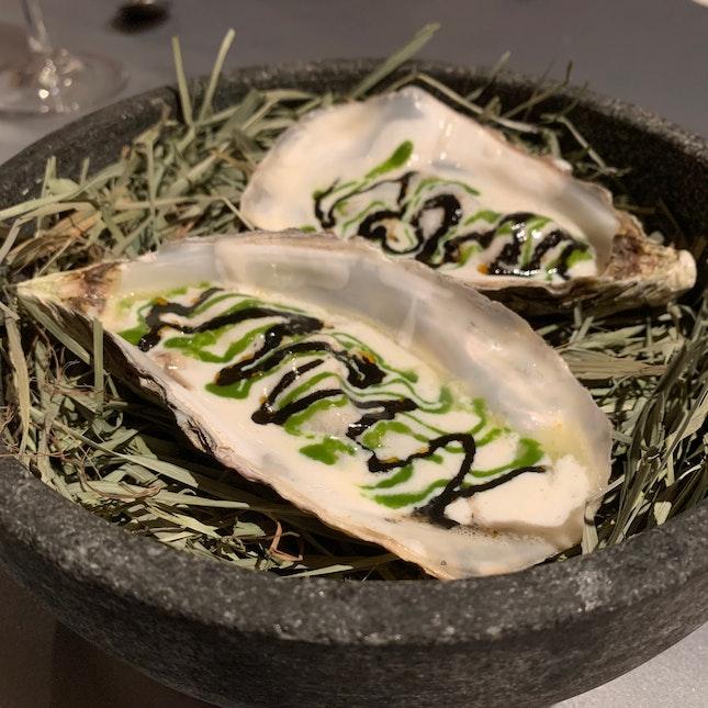Muirgen Oysters
