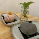 Zen & Taro Blanc