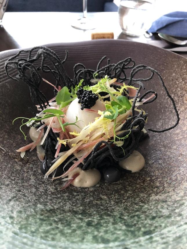 Japanese Squid