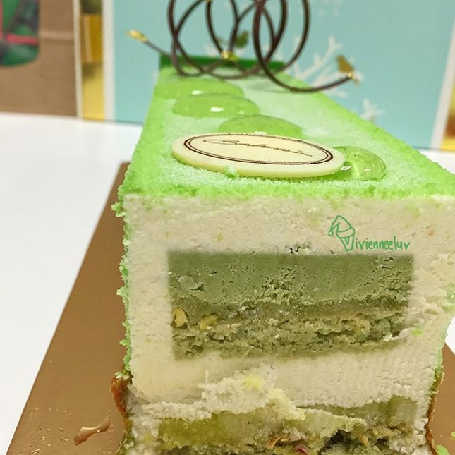 Shared this [Apple Piatachio Yule Log S$70 approx 1kg] with my colleagues and they all love it!