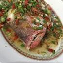 Chai Po Steam Fishhead.