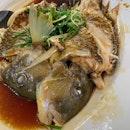 青衣鱼 for dinner.
