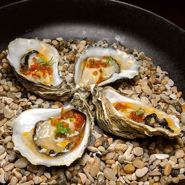 Seasonal oysters topped with chilli shallot fish sauce dressing from Botanico (@botanicosg).
