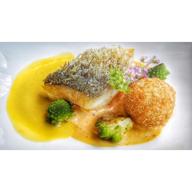 "New Zealand Blue Cod ""crispy scales"", crab croquette, organic pumpkin velouté, harissa."