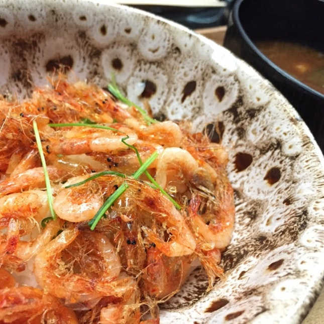 Sakura Shrimps