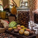 AND ITS BACKKKKKKK~ The Courtyard's Chocolate Buffet is bigger and better than before!