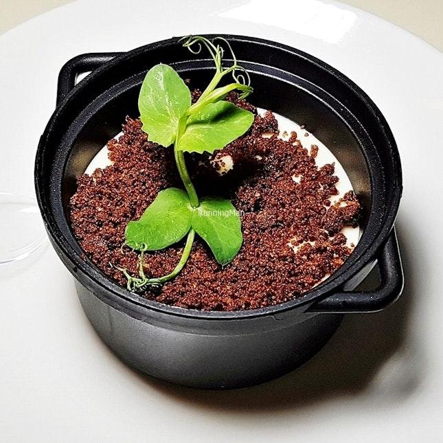 Tiramisu (SGD $118++ per pax buffet) @ Triple Three Restaurant.