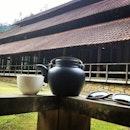 Purple Cane 紫藤茶原 (Bentong)