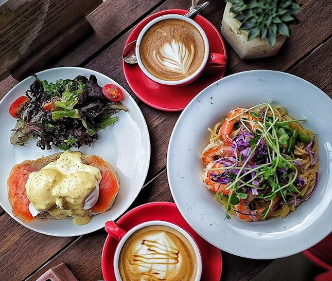 [Knots Cafe and Living] .