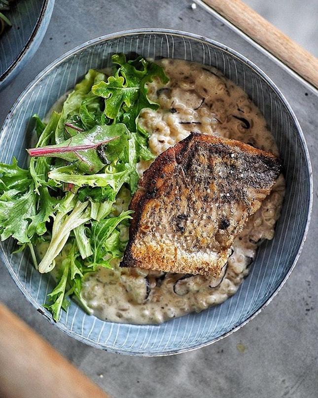 HAPU'UPU'U, Seabass, shitake, pesto, barley risotto and salad .