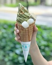 Genmaicha cone [$8.50] LAST chance to get your Genmaicha fix tml (while stocks last!) before another mystery flavour kicks in!
