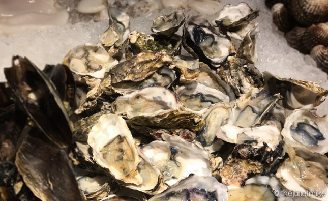 Fresh Oysters - All You Can Eat!