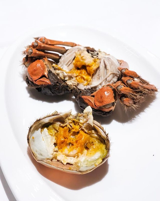 Steamed Hairy Crab, 清蒸大闸蟹配姜茶 ($208++ with 6 course hairy crab menu, or ala carte at $98/$128++ for female/male crab respectively).