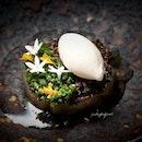 "Salt-Baked Celaraic (included in my nine-course $218++ ""Gastronomy"" dinner menu)."