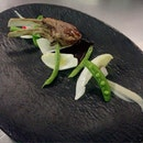 NZ Roasted Lamb Rack With Japan's Vegetable