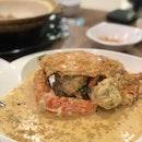 Golden Sand Crab