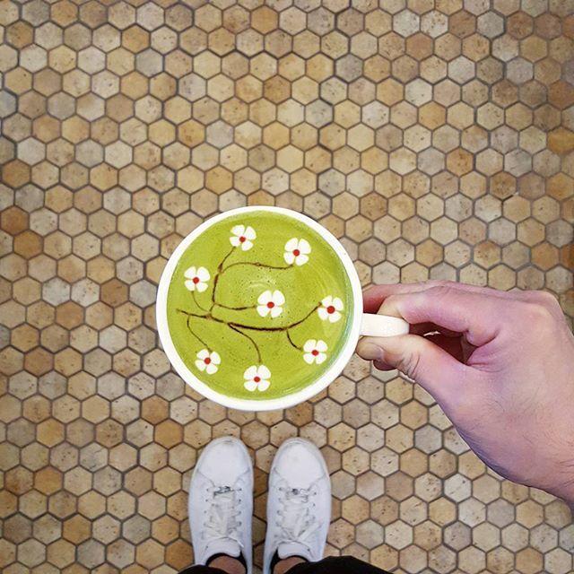 💚🌸💚🌸💚🌸💚 * Matcha Sakura from @kotobukicoffeesg * Many thanks to the barista who prepared this cuppa👍👍👍 * PS- Their Matcha Latte With Matcha Donut & Matcha melon Pan set was sold out 😥😢😭 * #matchasakura #kotobukisg #kotobukicoffeesg #starvingfoodseeker #burpple #hungrysquad #foodstarz #videomasak #phaat #foodbossindia #losangeleseats #eatingnyc #damien_tc #singaporeinsiders #thisisinsiderfood #jktfoodbang #exploreflavours #asiafoodporn #feedthepanda #foodie #dailyfoodfeed #thisisinsider #thisisinsiderfood