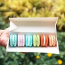 Macarons [S$10.00/6pcs] ・ ⌯ Baileys ⌯ Champagne ⌯ Earl Grey ⌯ Lavender ⌯ Matcha ⌯ Peanut Butter ・ @AnnabellaPatisserie's Peanut Butter macaron has got to be my favourite in this box though the shell colour doesn't reflect the flavour😂 ・ #Burpple #FoodieGohSingapore ・ ・ ・ ・ #instadailyphoto #photooftheday #followme #follow #tslmakan #food #yummy #foodstagram #foodgasm #sgfoodies #sgfoodie #foodsg #singaporefood #whati8today #sgfoodporn #eatoutsg #8dayseat #singaporeinsiders #singaporeeats #sgfoodtrend #sgigfoodie #thisisinsiderfood #foodinsingapore #foodinsing #macarons #dessert #sweets