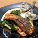 Sashimi Grade Baked Salmon