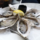 $1 oysters?