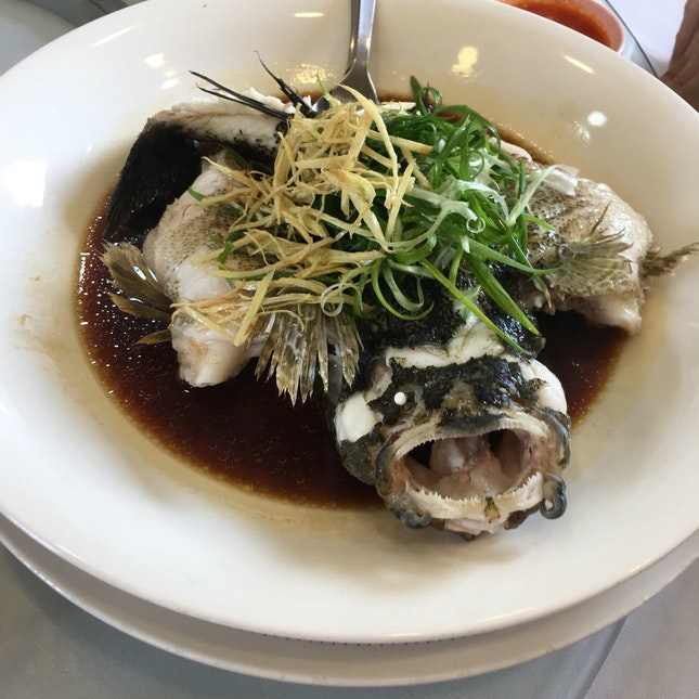 Steamed Fish In Hong Kong Style