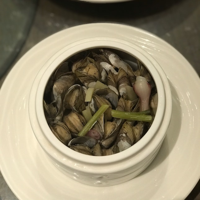 Steamed DUOTOU Clam In Fermented Wine
