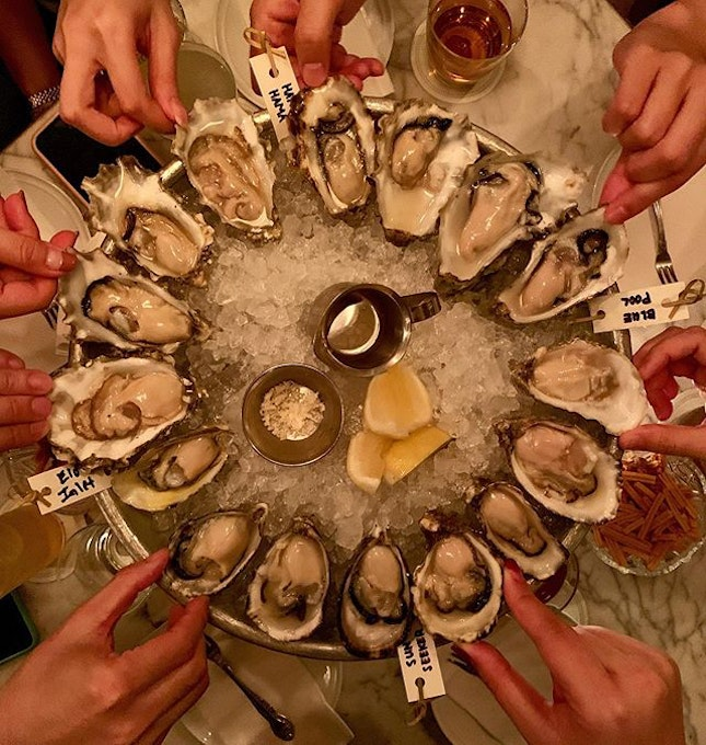 of oysters and laughters - an amazing night.