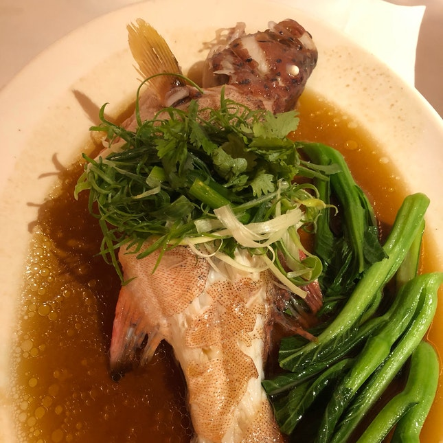 Well Steamed Small Grouper