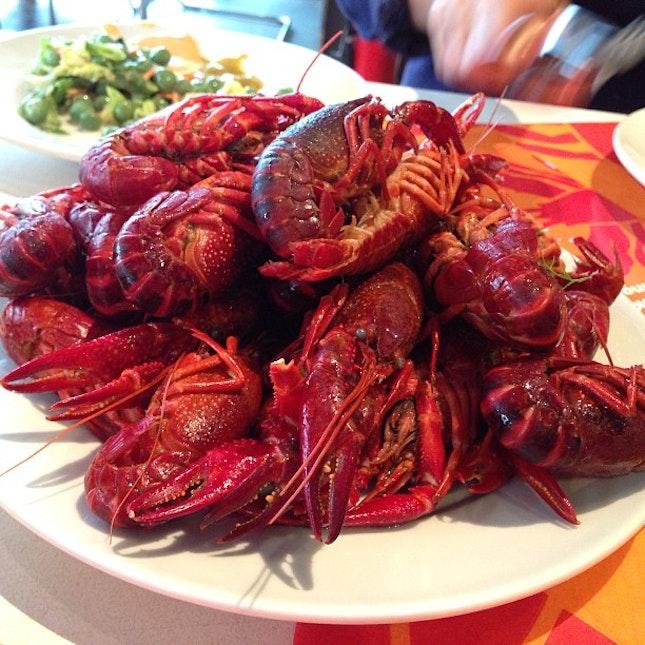 Swedish crayfish yummy #swedish #crayfish #yummy #delicious